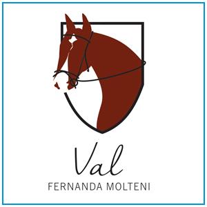 Logo para material de cavalo de salto, de propriedade da amazona Fernanda Molteni